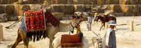 10/21(土) <エジプト人が語る文化と今!>グローバルナイト! ~旅好き・世界が好きなみんなで語る夜~ vol.8